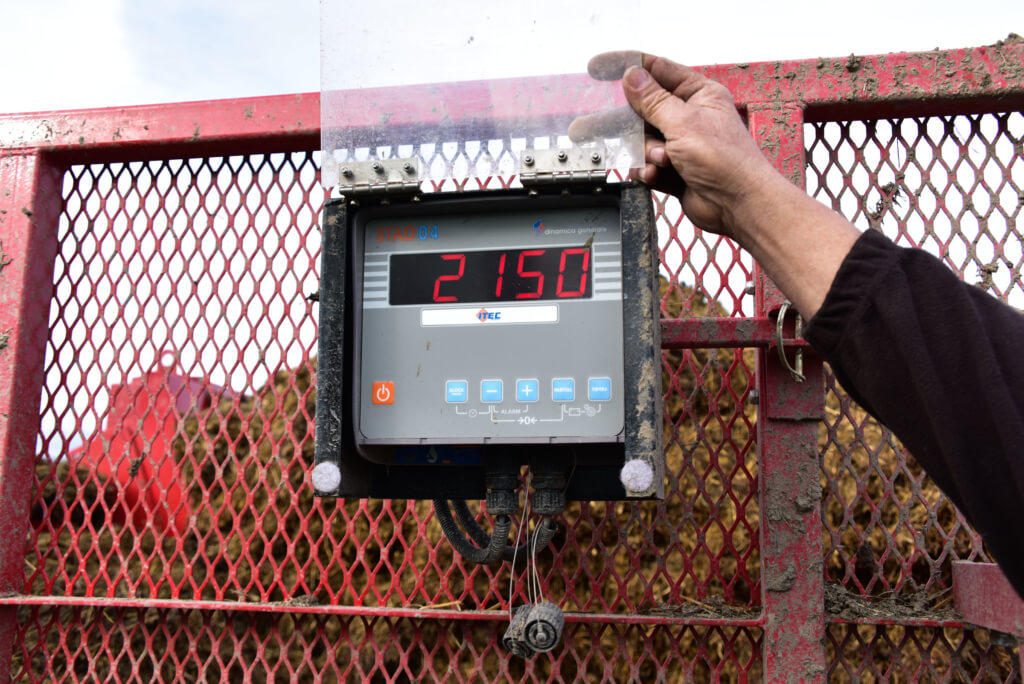Load cell indicator weighting in Pakistan | General weigh system